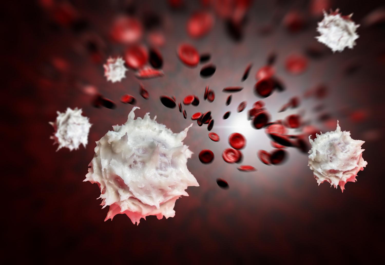 förhöjda vita blodkroppar stress