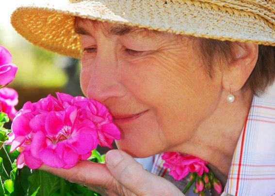 Sämre luktsinne kan vara tidigt tecken på Alzheimers