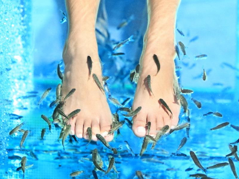 fotbad med fiskar