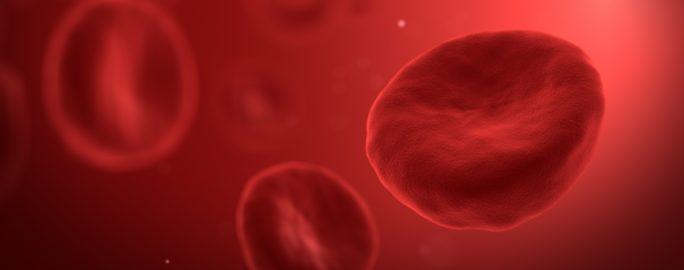 blodkroppar i urinen