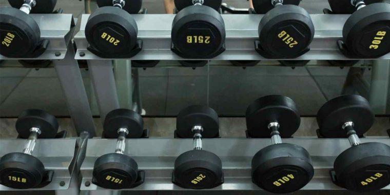 vikter träning