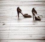 Undvik skavsår vid nya skor