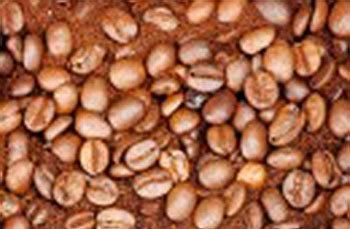 Kaffe kan förhindra dålig syn