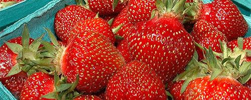 Jordgubbar innehåller fibrer vilket är bra för ibs-magar.