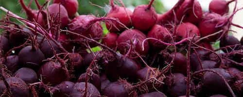 Rotfruktar är bra att äta för ibs-magar.