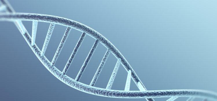 3D modell av DNA-molekyl