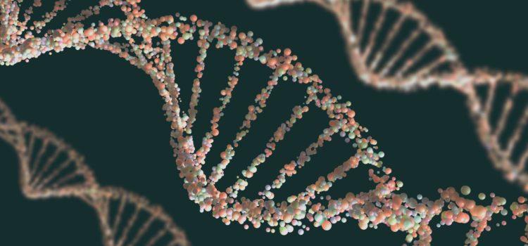 3D-bild av DNA