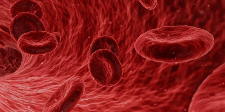 Blodceller