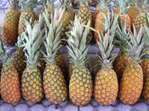 Ananas som stapplats på rad.