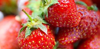 allergi jordgubbar symtom