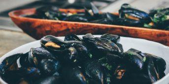 Otack mussla sprids rekordsnabbt