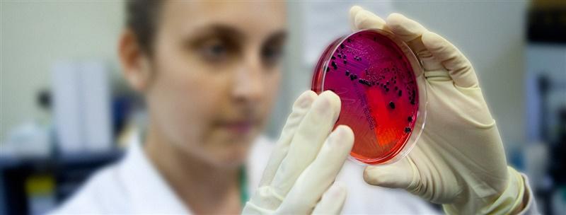 antibiotika-forskare